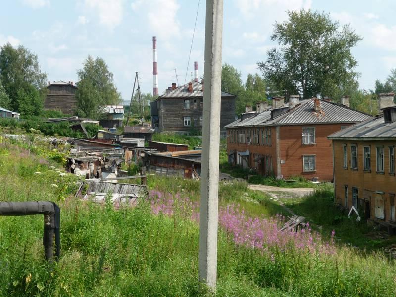 Дырнос. Развалины домов № 78 и 80.На заднем плане №46 и 82, справа №84 и 86. 2014 г.