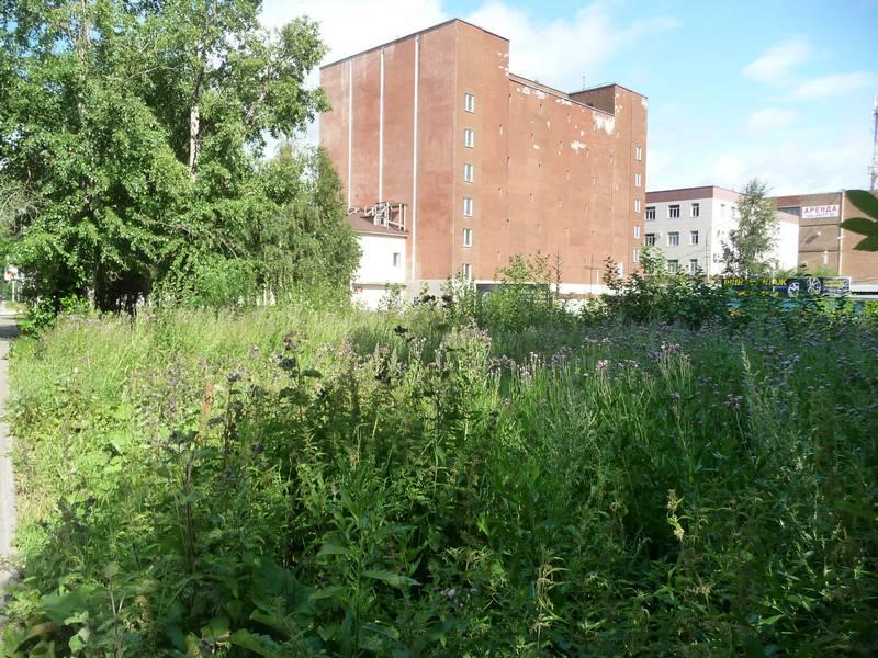 Место, где был дом №65.2014 г.