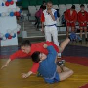 Республиканский турнир по борьбе самбо