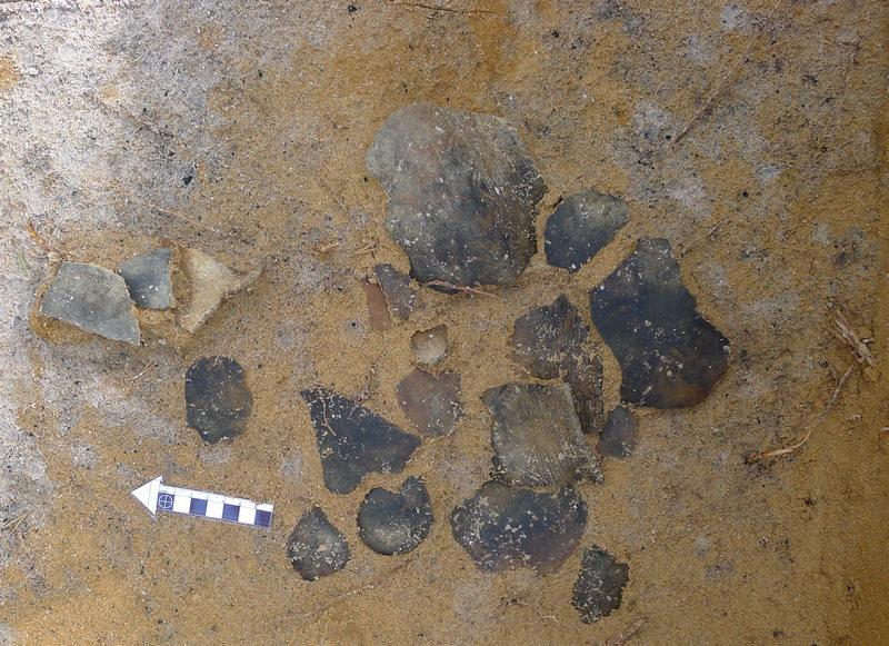 Эжольский могильник. Обломки глиняной посуды.