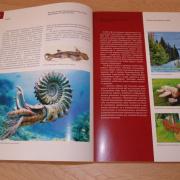 Историко-культурное достояние Республики Коми представлено на страницах новой книги